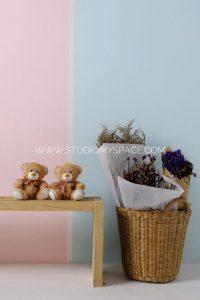 สตูดิโอถ่ายภาพให้เช่า หาดใหญ่ : Pastel wall